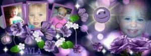 Ayla Purple flowers