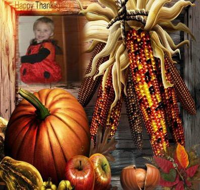 thanksgiving ayla